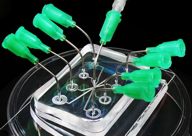 Микрожидкостная лаборатория на чип-устройстве из полистирола
