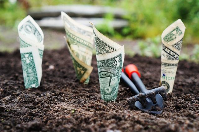 доступны новые облигации федерального займа