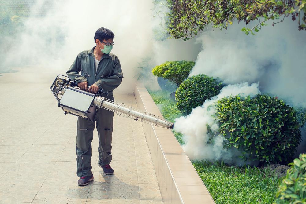 Комары разносят вирус Зика