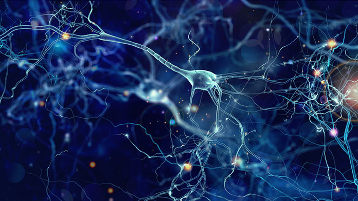 Узлы нейронной сети