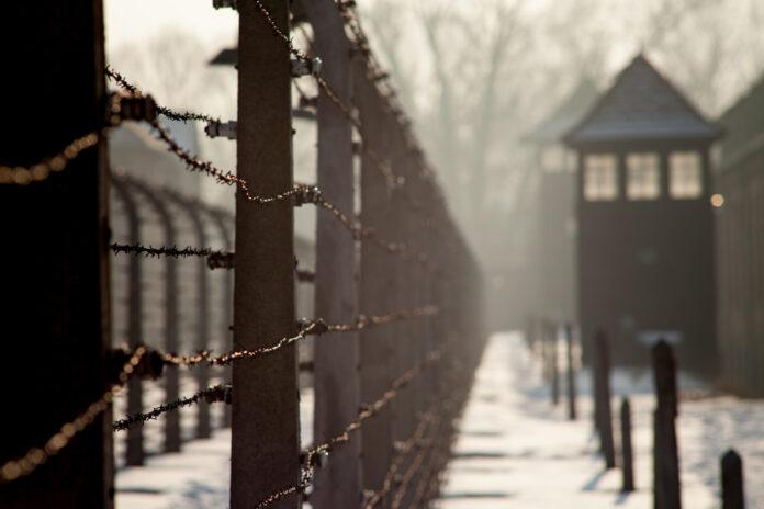 использование нацисткой символики