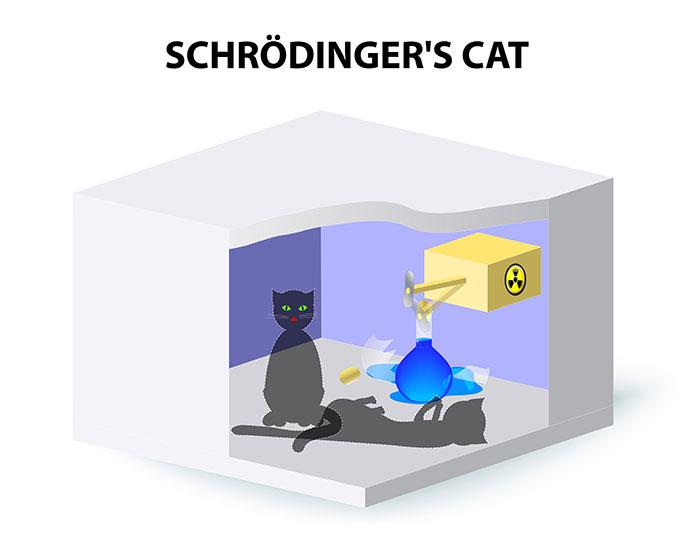 Схема кота Шредингера.