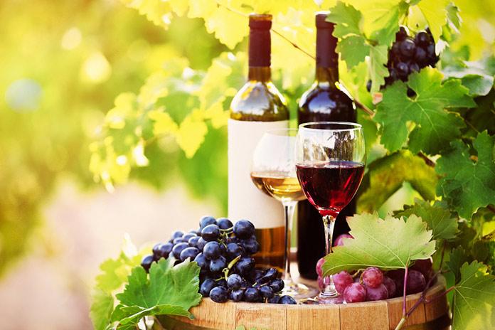 Виноделие в Среднеземноморье