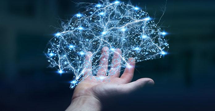 нейронаука. нейросеть на ладони