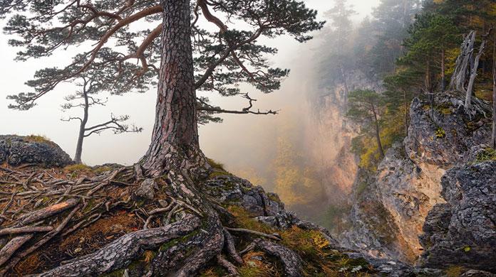 Горное плато Лагонаки, Адыгея, Россия.