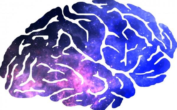 мозг, вселенная