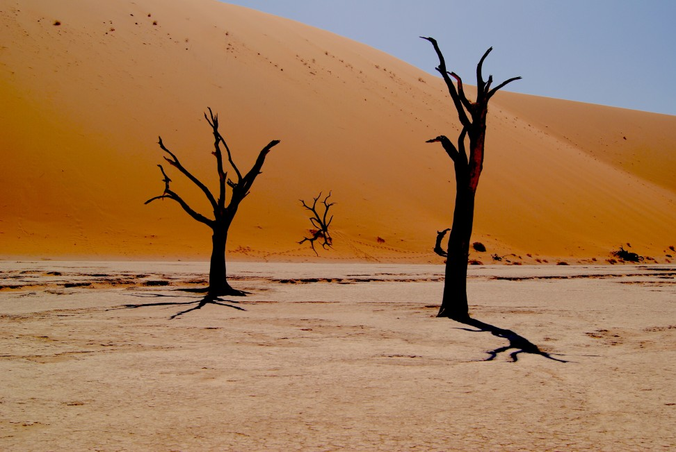 Пустыня, климат, катастрофа