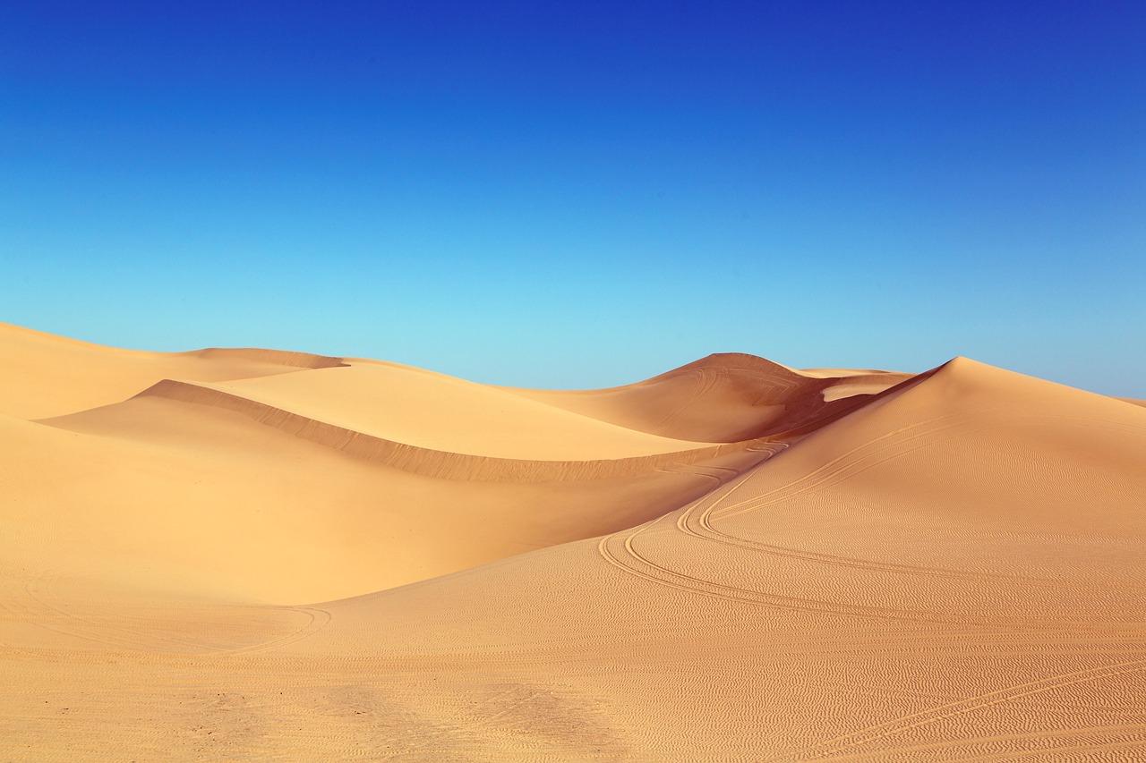 Пустыня, Сахара, озеленение