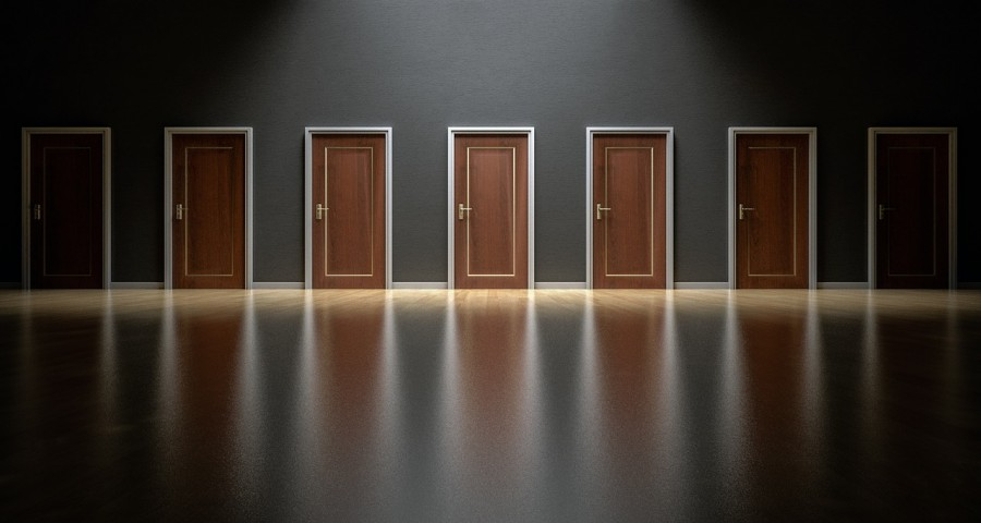 двери, выбор, решение