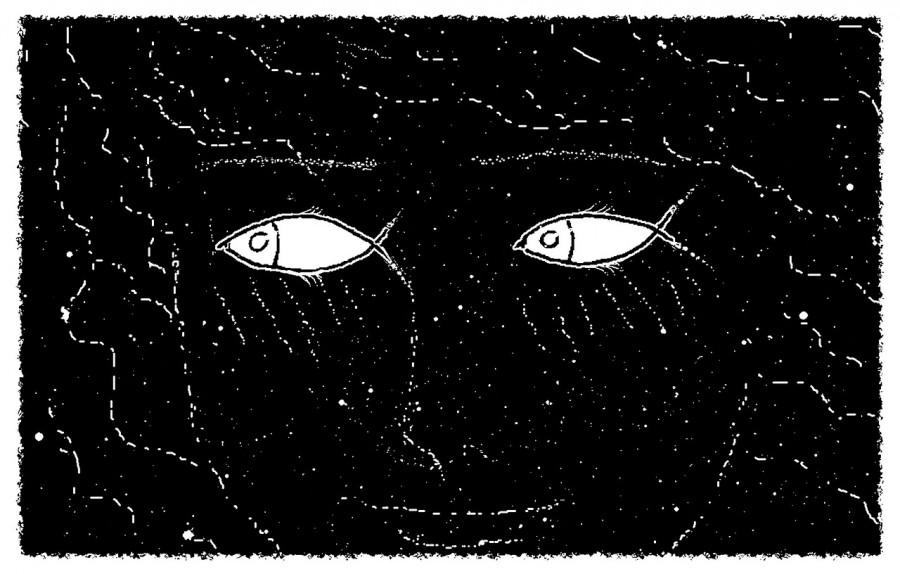девушка, рыбы, рисунок, оптическая иллюзия