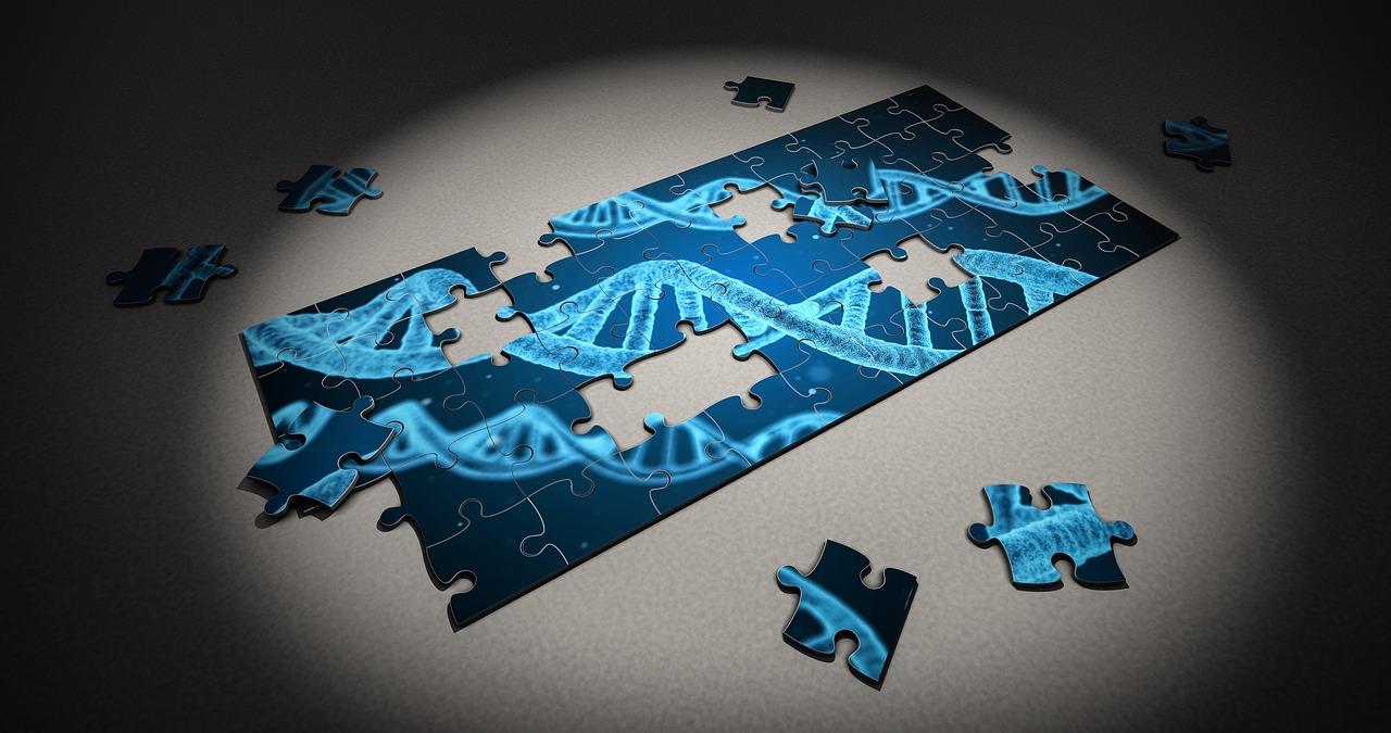 ДНК, перекройка, ученые, Россия