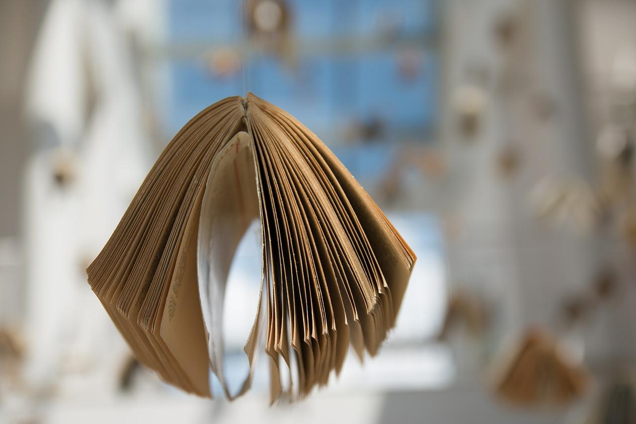 книга, инсталляция, литература