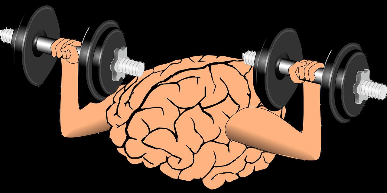 Мозг, упражнения
