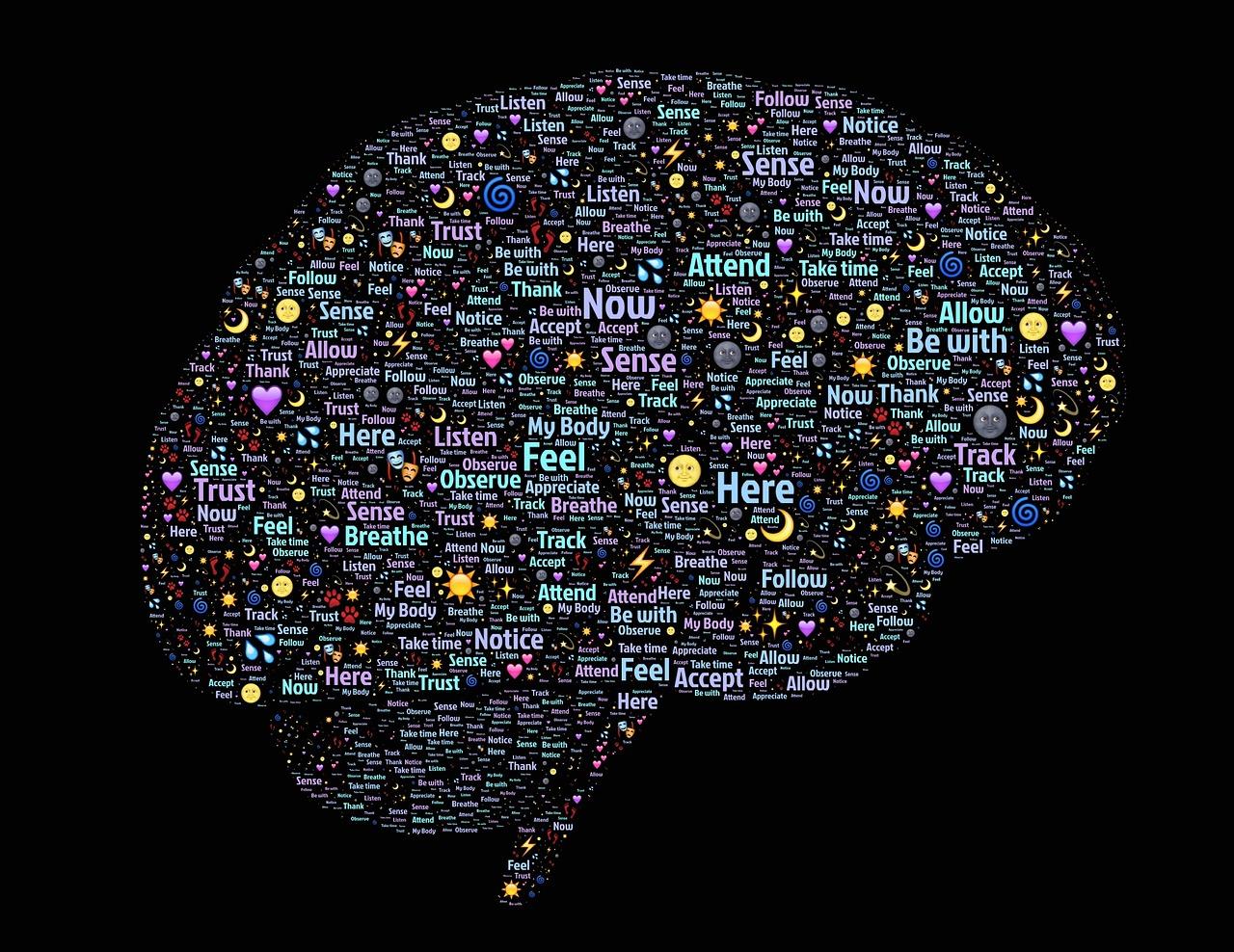 Мозг, интеллект,нейроны