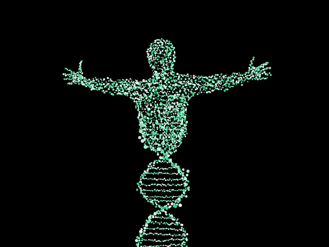 Генетика, днк, патология