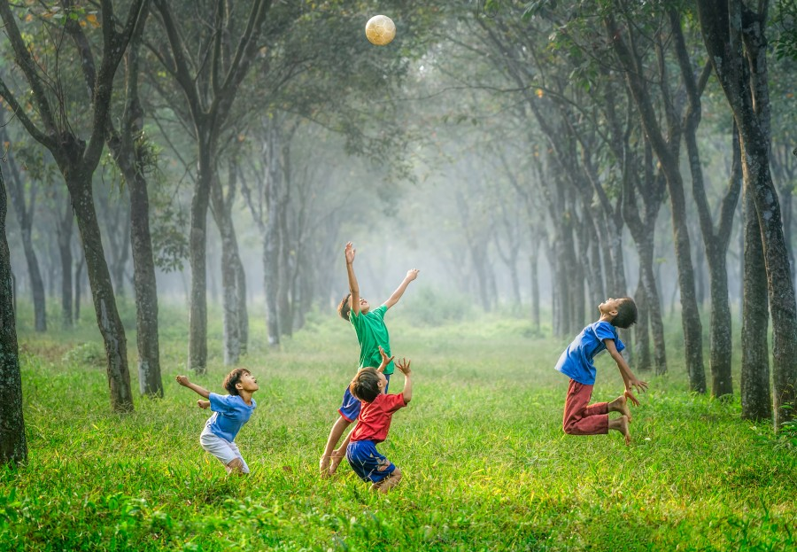 Дети, лес, игра