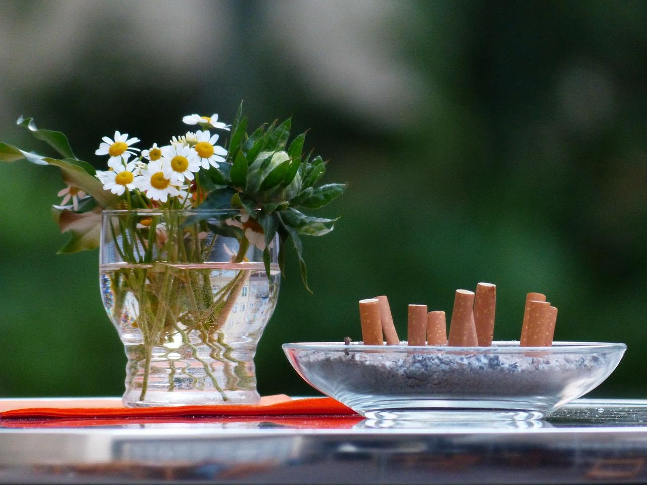 ромашки, окурки, сигареты