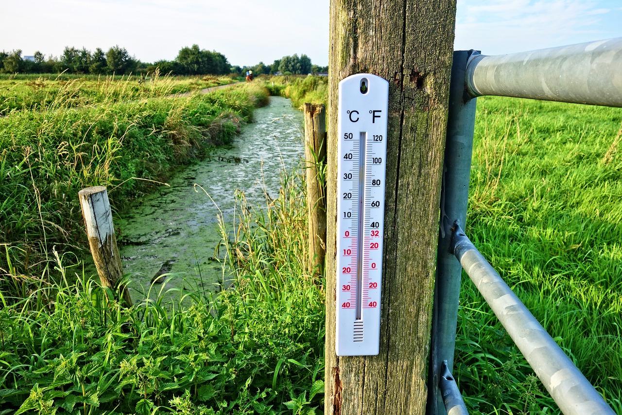 температура, градусы, термометр
