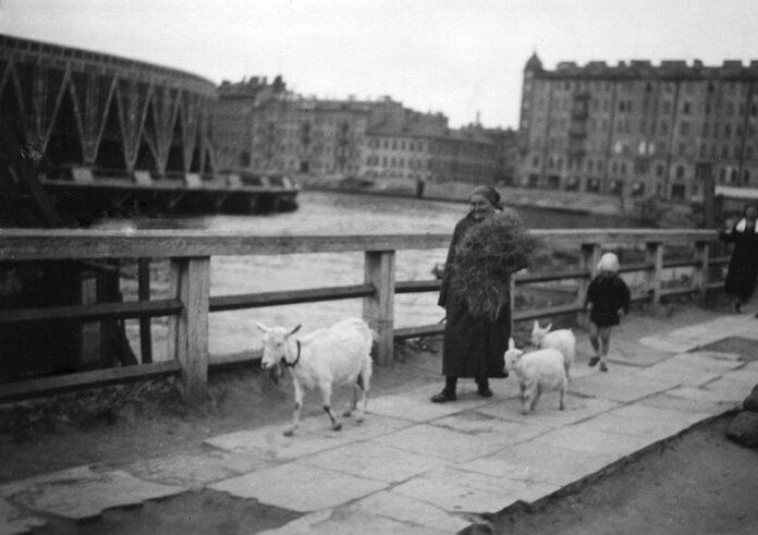 Ленинград , 1935 год