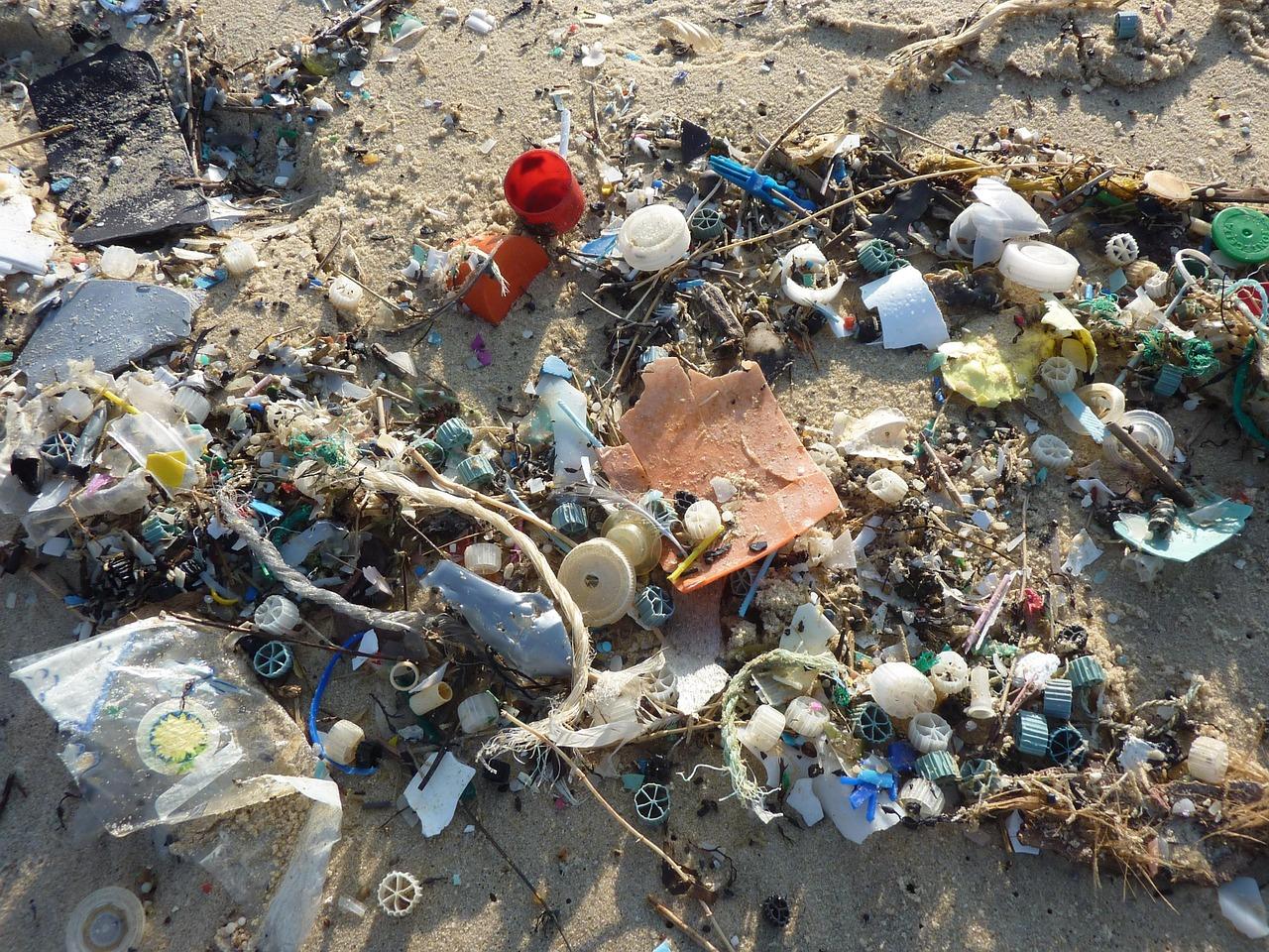 пластик, берег, экология