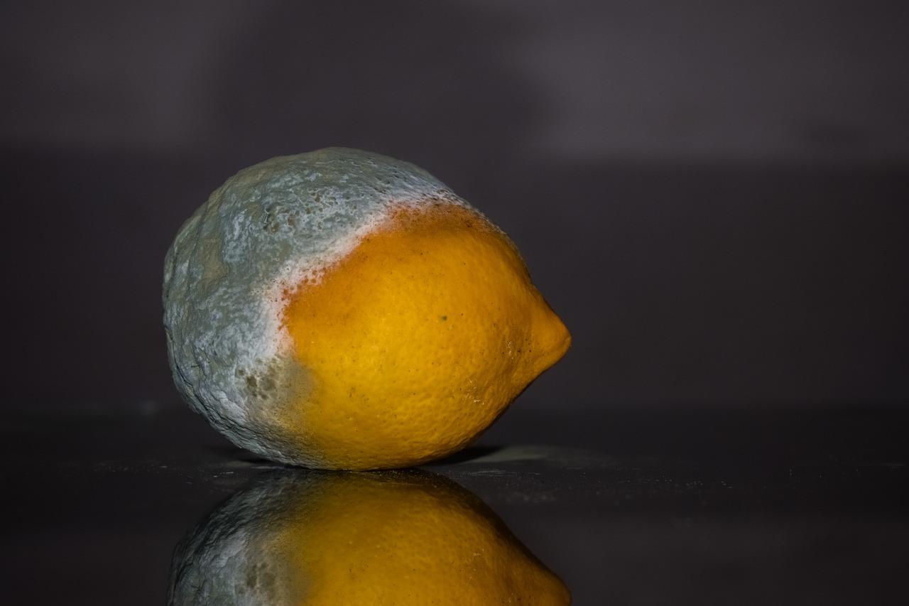 Лимон, просроченная еда