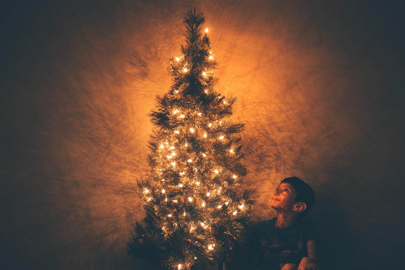 Новый год, елка, традиция