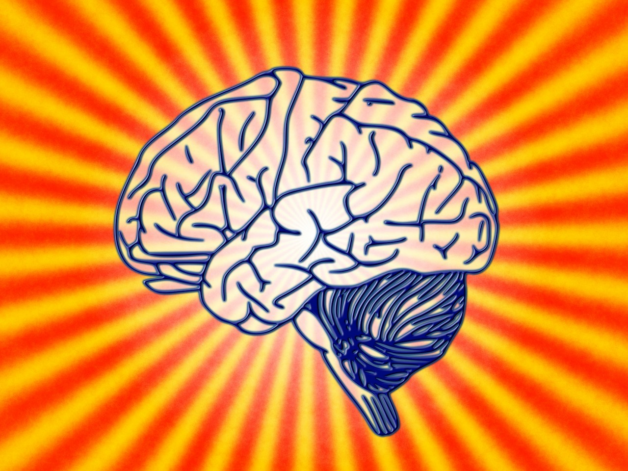 мозг, лекция