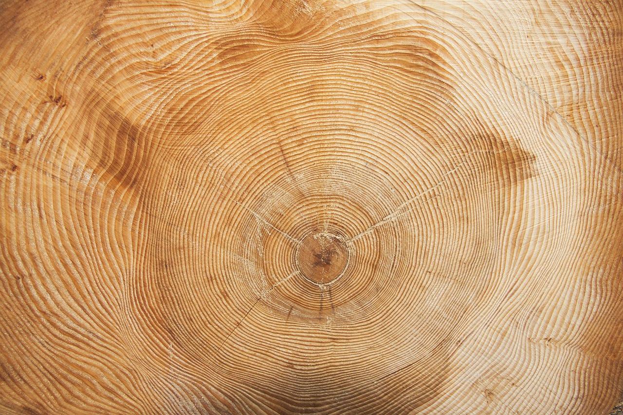 дерево, кольца, текстура