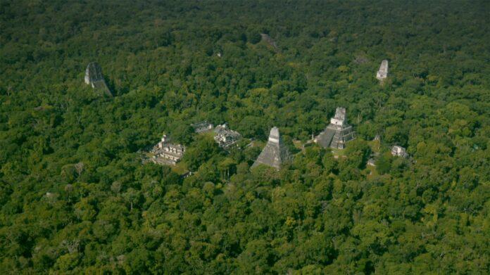 майя, руины, джунгли