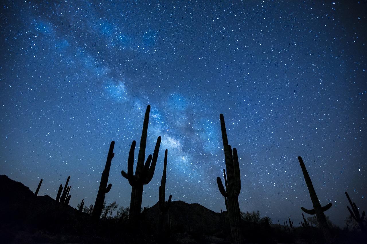 Америка, кактусы, ночь, звезды