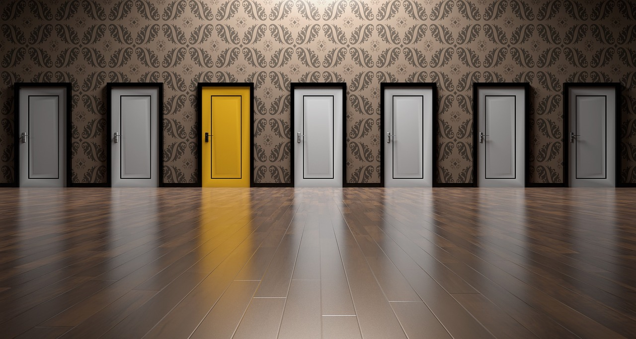 Выбор, двери