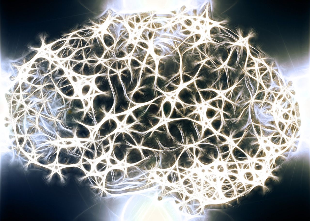 нейроны, мозг, нейробиология