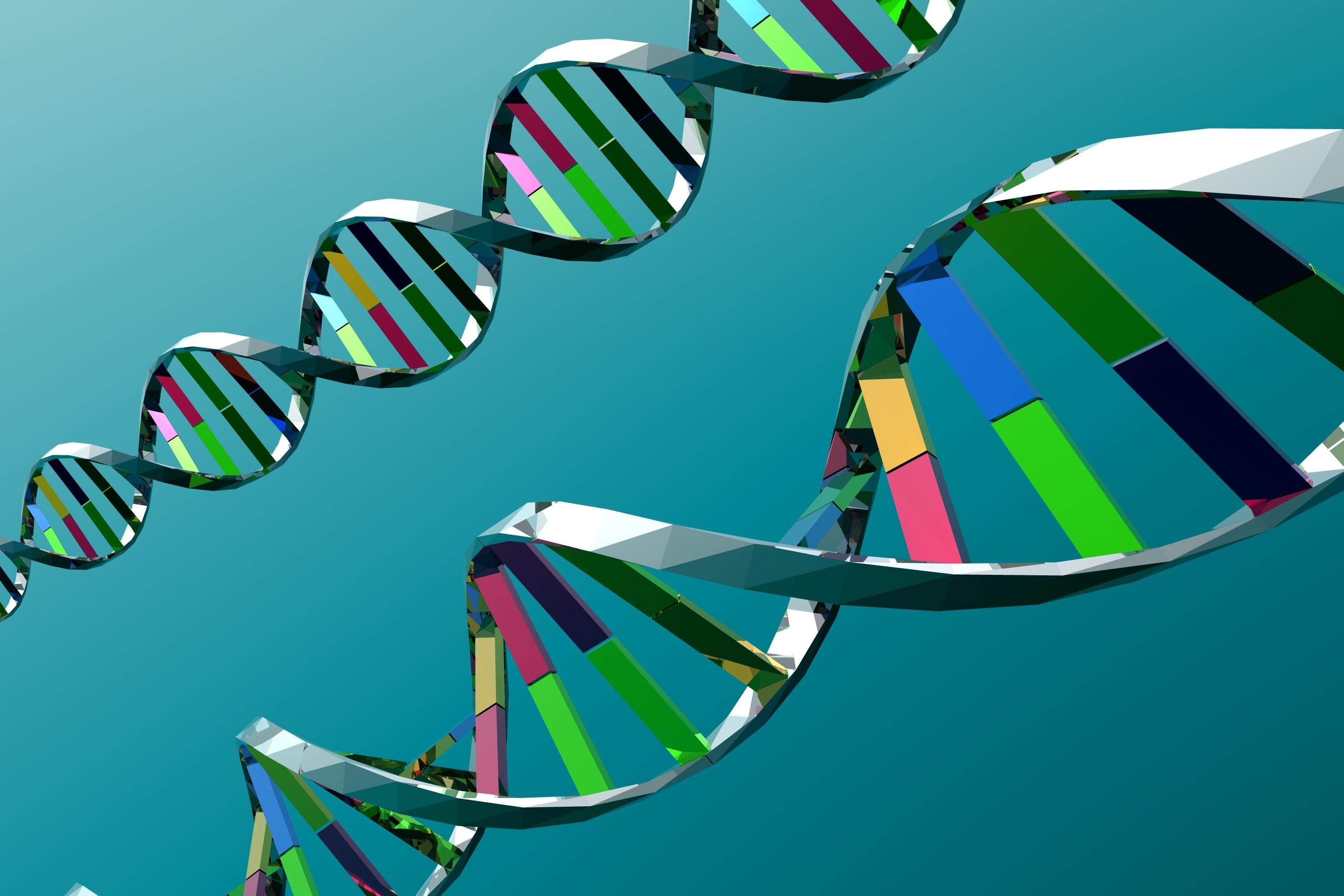 ДНК, гены, хромосомы