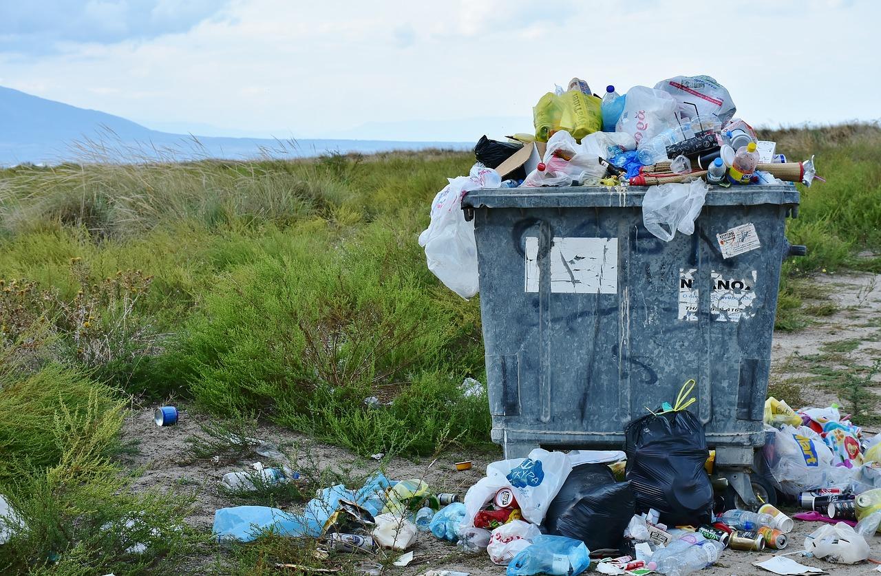 Свалка отходов, мусорный бак