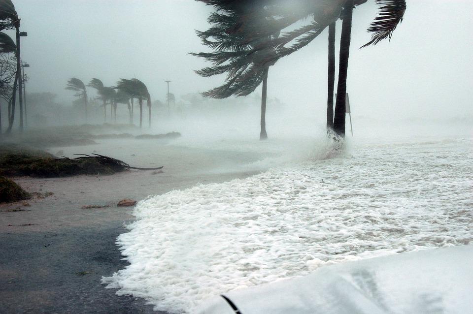 Глобальное потепление: угроза или страшные сказки?