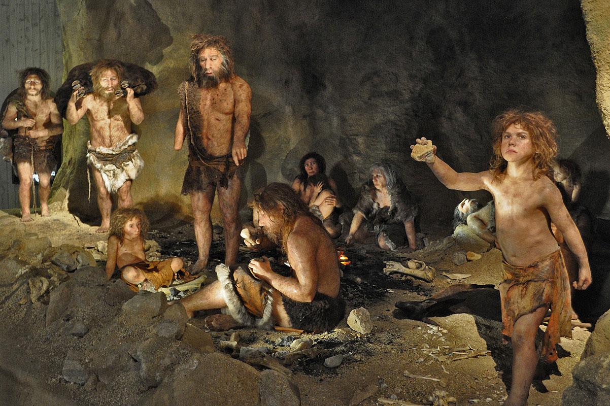 картинки неандерталец и кроманьонец два основных